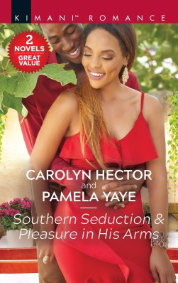 Southern Seduction Cover